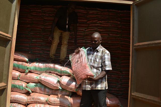Antony Ezekiel Ndukpo with a packet of certified maize seed