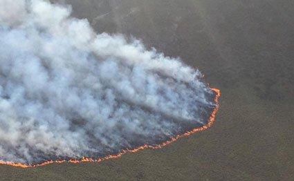 Fire raging on Mt Kenya National Park on March