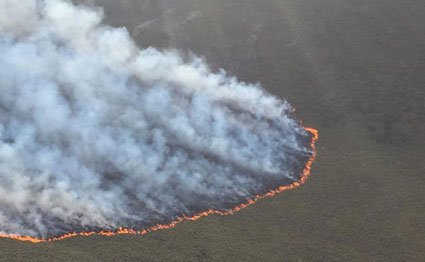 Fire raging on Mt Kenya National Park on March