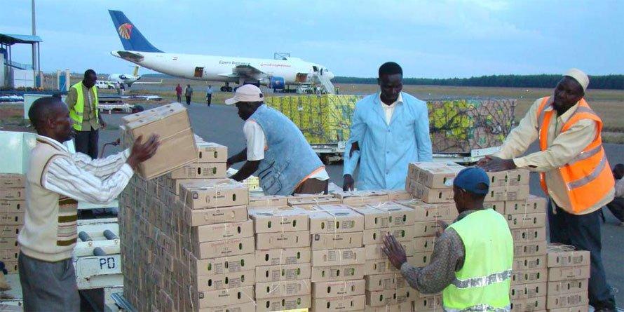 Import tariffs increase seen slowing down global air cargo
