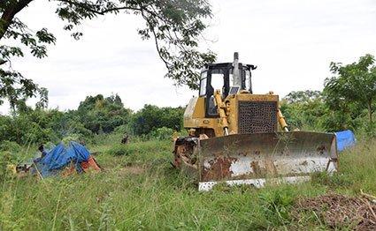 Conservationists, kingdom clash over Ugandan forest