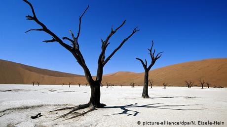 Afrikas Nationalparks (picture-alliance/dpa/N. Eisele-Hein)